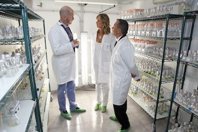 Minister Cristina Garmendia and President Paulino Rivero visiting the renovated facilities of the Spanish Bank of Algae together with the Director of BEA, Prof. Guillermo García Reina.