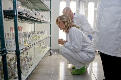 Prof. García Reina showing the Minister one of the cultivation chambers holding  some of the new isolated strains of BEA.