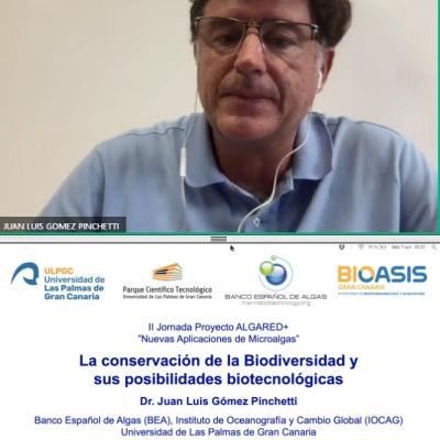El Banco Español de Algas en la II Jornada del Proyecto ALGARED+ organizado por CTAQUA