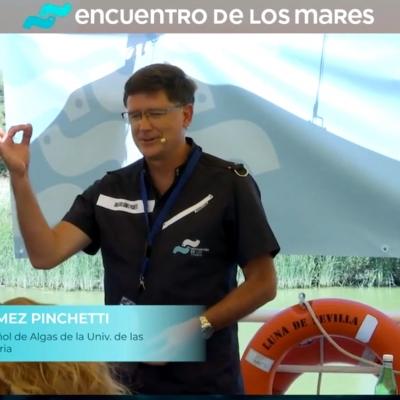"""El BEA presente en la 3º edición del """"Encuentro de los Mares"""" realizada del 5 al 7 de julio de 2021"""