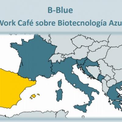 El BEA participa en el Work Café sobre biotecnología azul en el marco del proyecto estratégico B-Blue