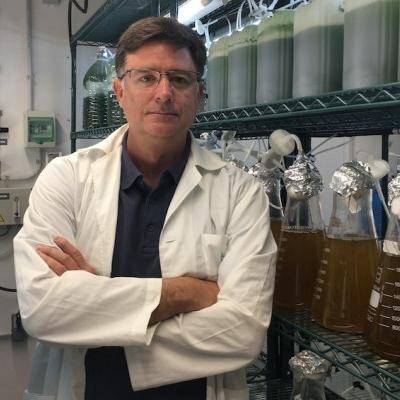 El Banco Español de Algas participa en una investigación de biofiltración de aguas residuales y producción de bioenergía