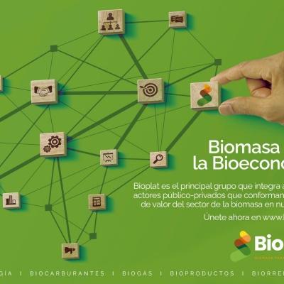 BIOPLAT realizará la próxima semana dos reuniones internas monográficas sobre Algas y Bioproductos con participación del BEA
