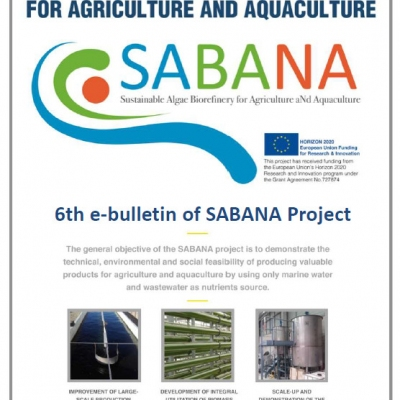 6th e-bulleting from SABANA project already available
