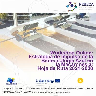 Workshop Online: Estrategia de Impulso de la Biotecnología Azul en la Macaronesia: Hoja de ruta 2020-2030 - 11 de noviembre de 2020